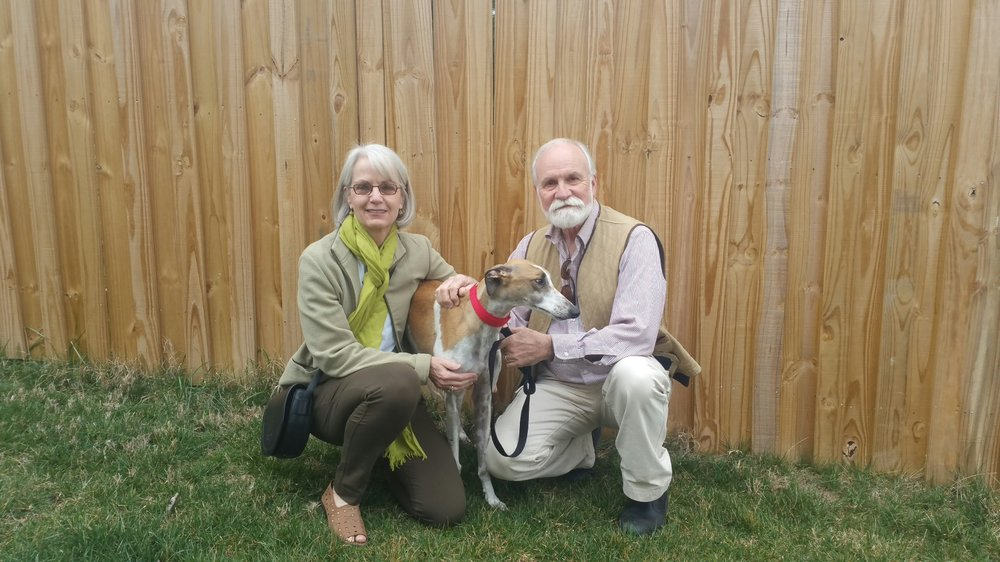 Willow, our latest AWESOME Grey foster went to her forever home today to Jim and Betsy! They met and immediately fell in love with her and adopted her right away!