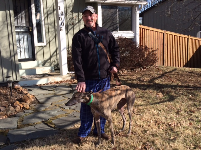 James now is loving his majestic brindle boy, Octane. James spent years with Afghan's and is now enjoying a the Greyhound, without all that hair! Congratulations James and Octane!