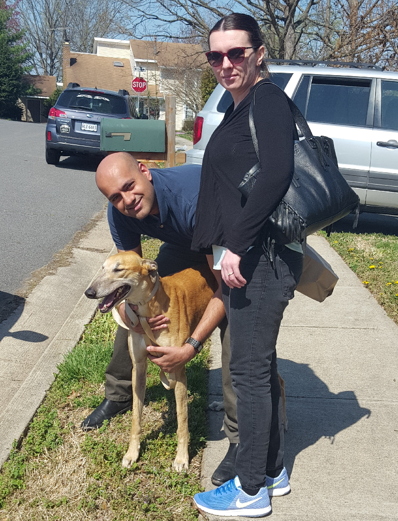 Chris and his wife Beata have been waiting and wanting a Greyhound for a long time. That day finally arrived when they met and fell in love with Val!  Val will be a spoiled couch potato and will be taking some training classes soon!  Congratulations to Chris, Beata, and Val!