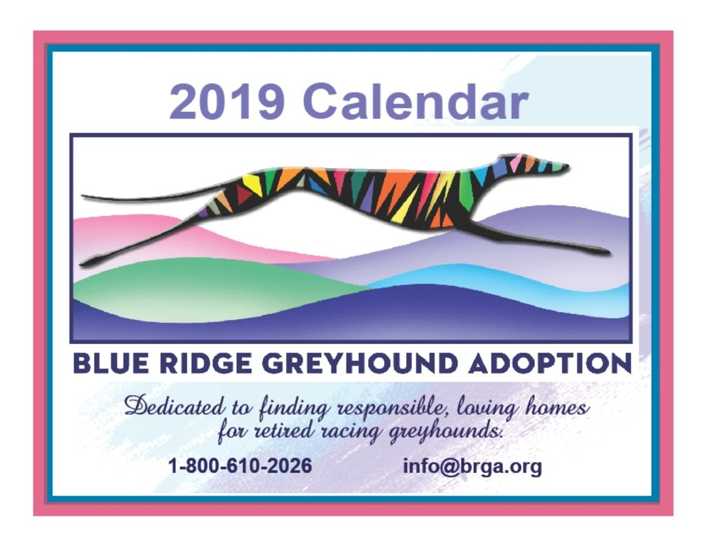 Didn't get your fix of adorable hounds in our 2018 calendar? Look no further, our 2019 calendar is oozing with even more cuteness.