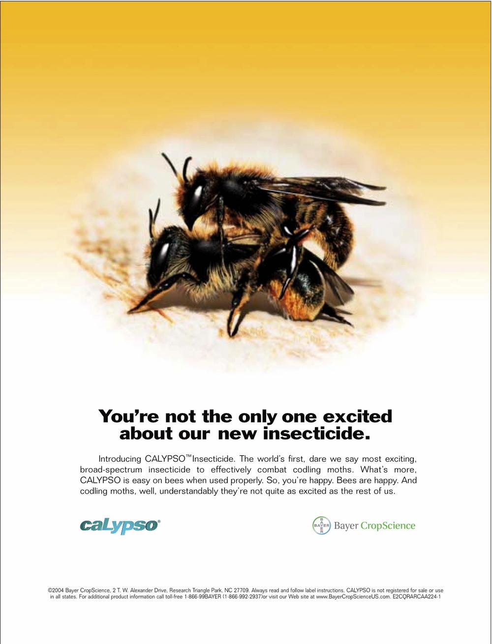 2004 Calypso Codling Moth Ad.jpg