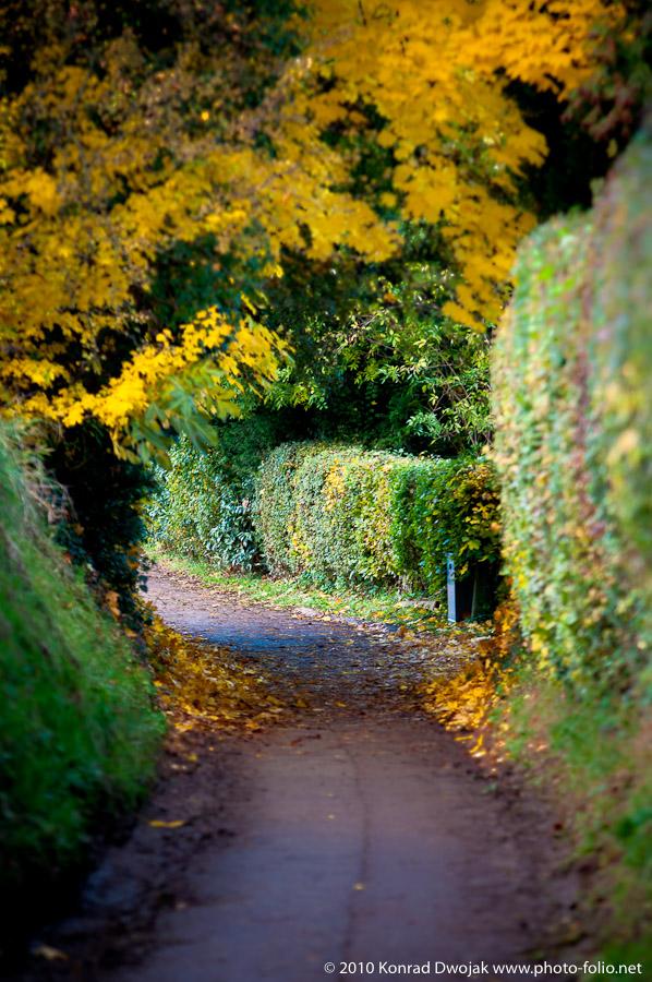 Maastricht_Netherlands_November_2010-43.jpg