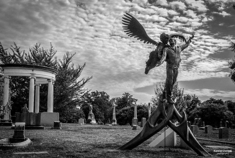 Come fly with me - Elmwood Cemetery