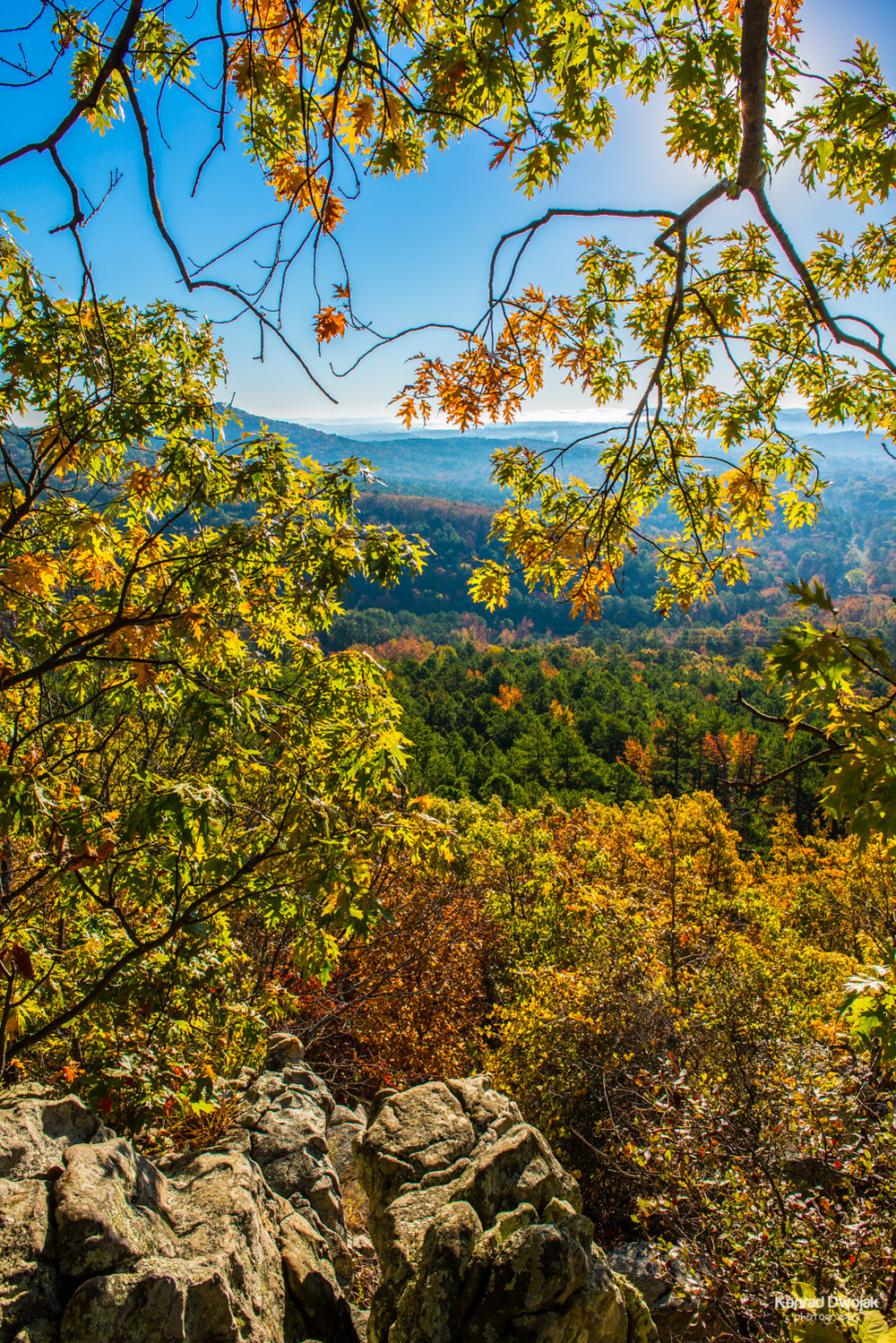 Fall foliage view while climbing the Pinnacle Mountain