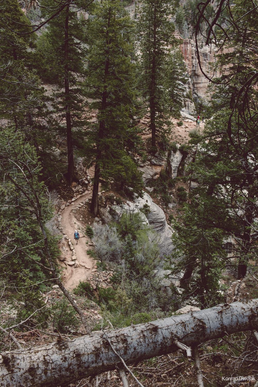 North Kaibab Trail - Grand Canyon North Rim