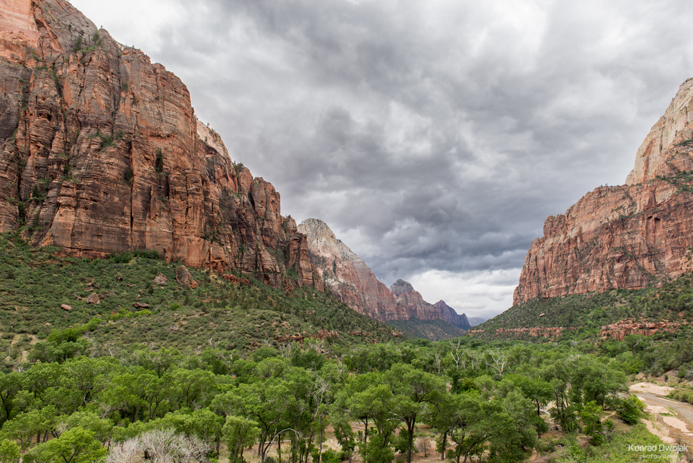 Upper Emerland Pool Trail - Zion National Park