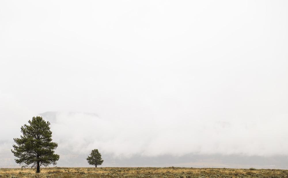 Moran, Wyoming