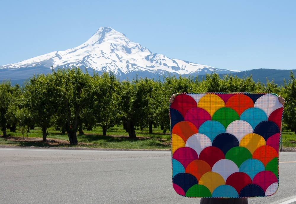 Hooray for Rain - Ample Curves Quilt and Mt. hood