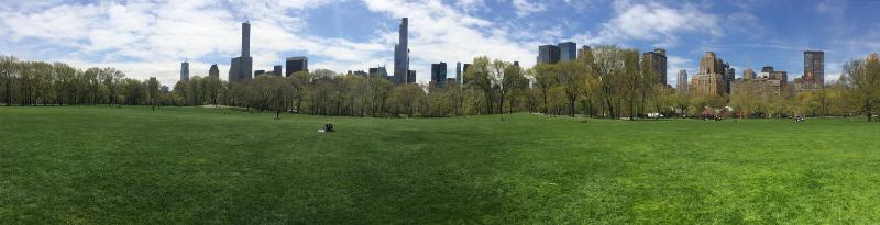 Central Park - www.hoorayforrain.com