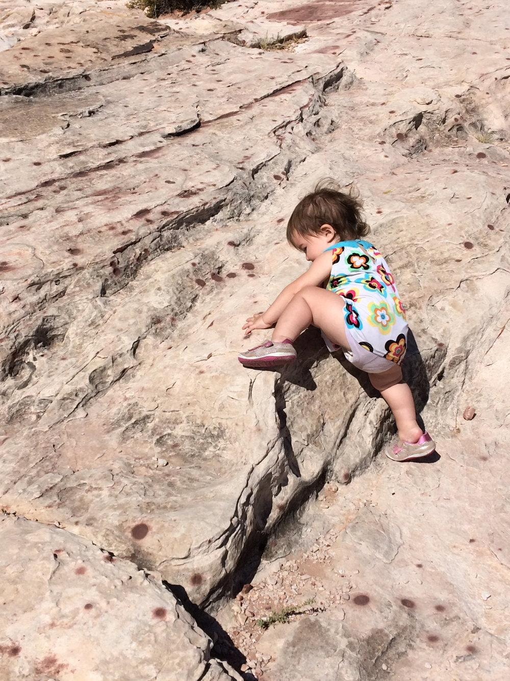 Little Sierra scaling a rock during our soil day adventure