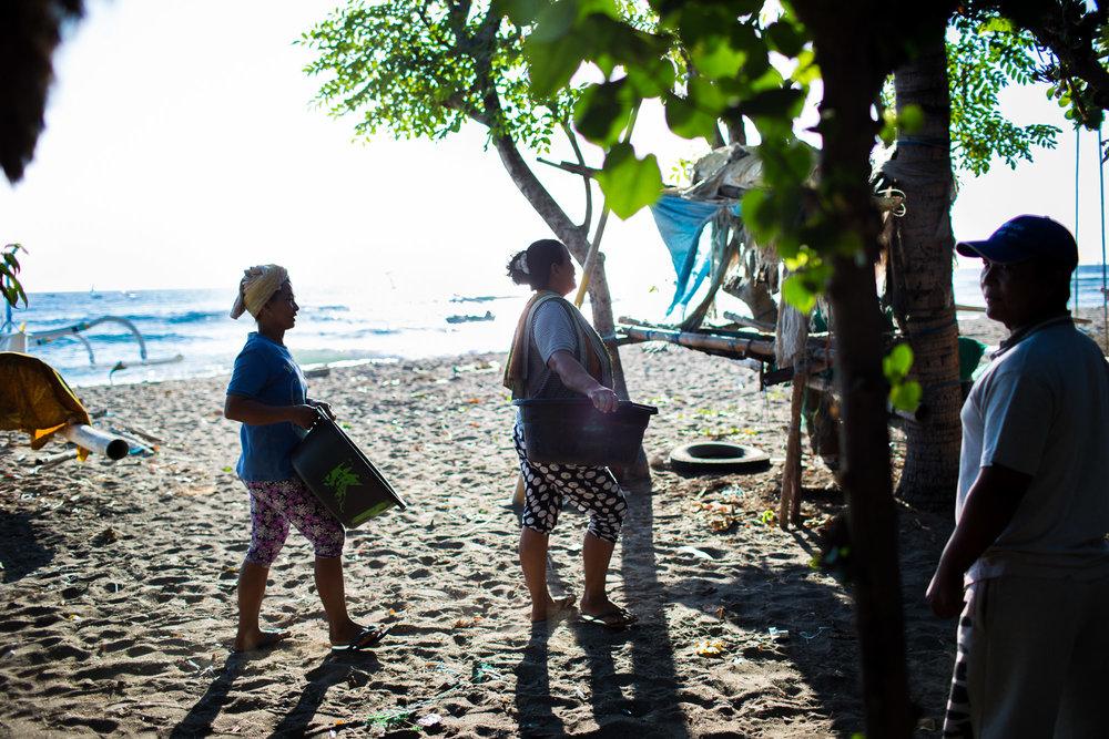 ©mette_lampcov_Bali-fish-12.jpg