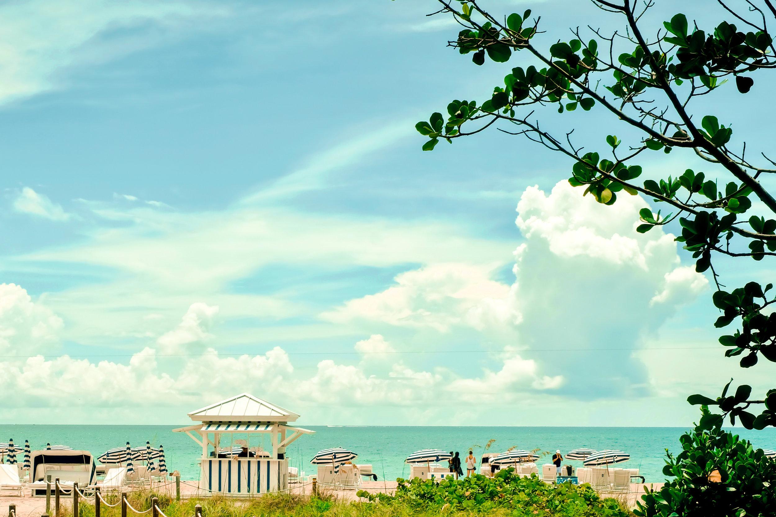 Miami — Yanni Malo