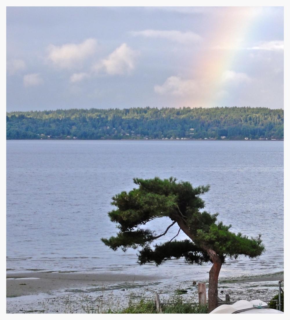 Rainbow over Vashon Island, a short ferry ride away.