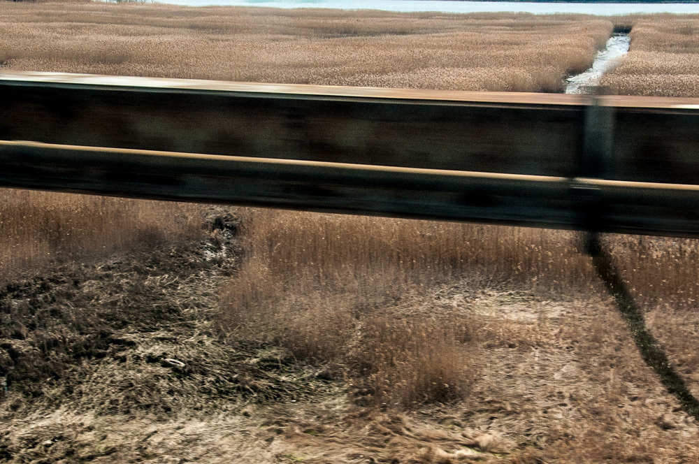 Meadowland Shadow.jpg
