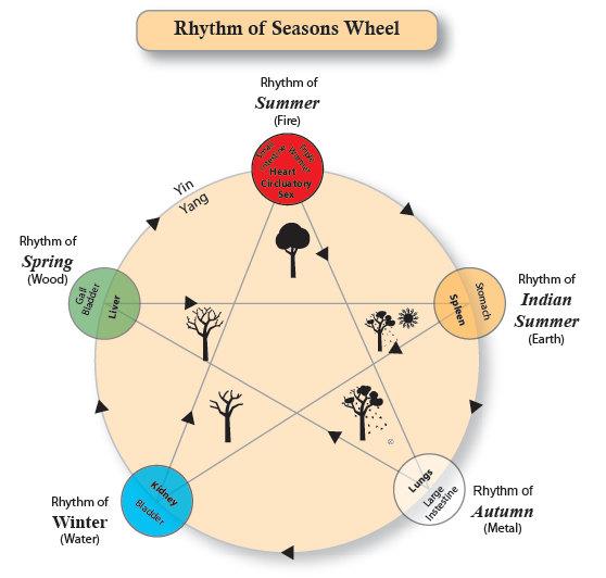 acu seasons.jpg