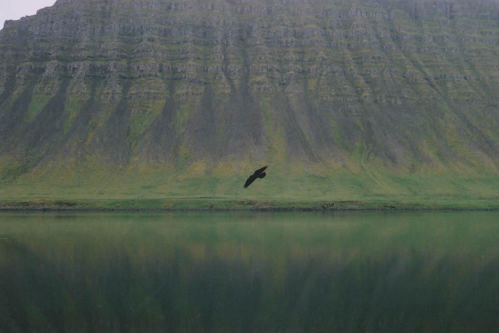Bildudalur, Icelandic Westfjörds