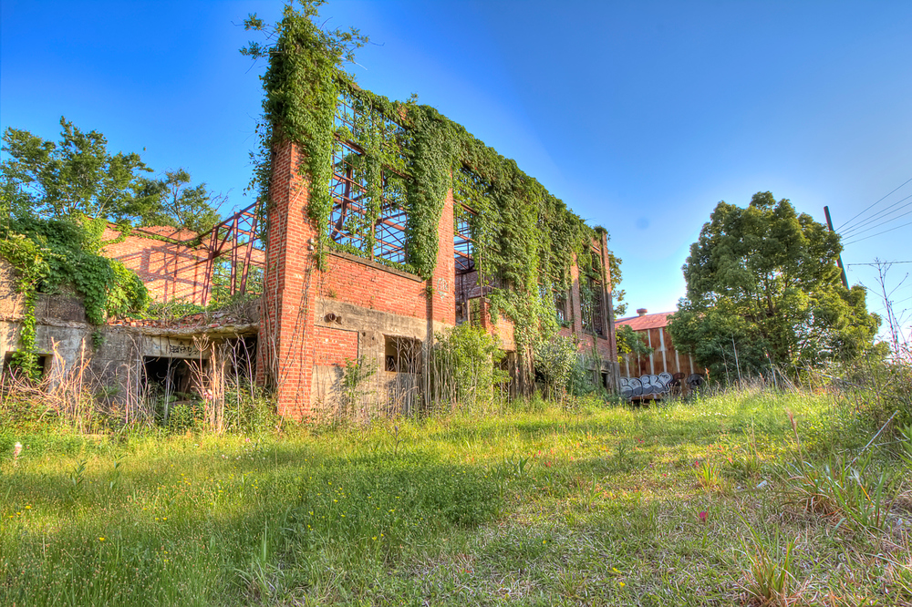 Another view of the abandoned Charles Boldt Paper Mill