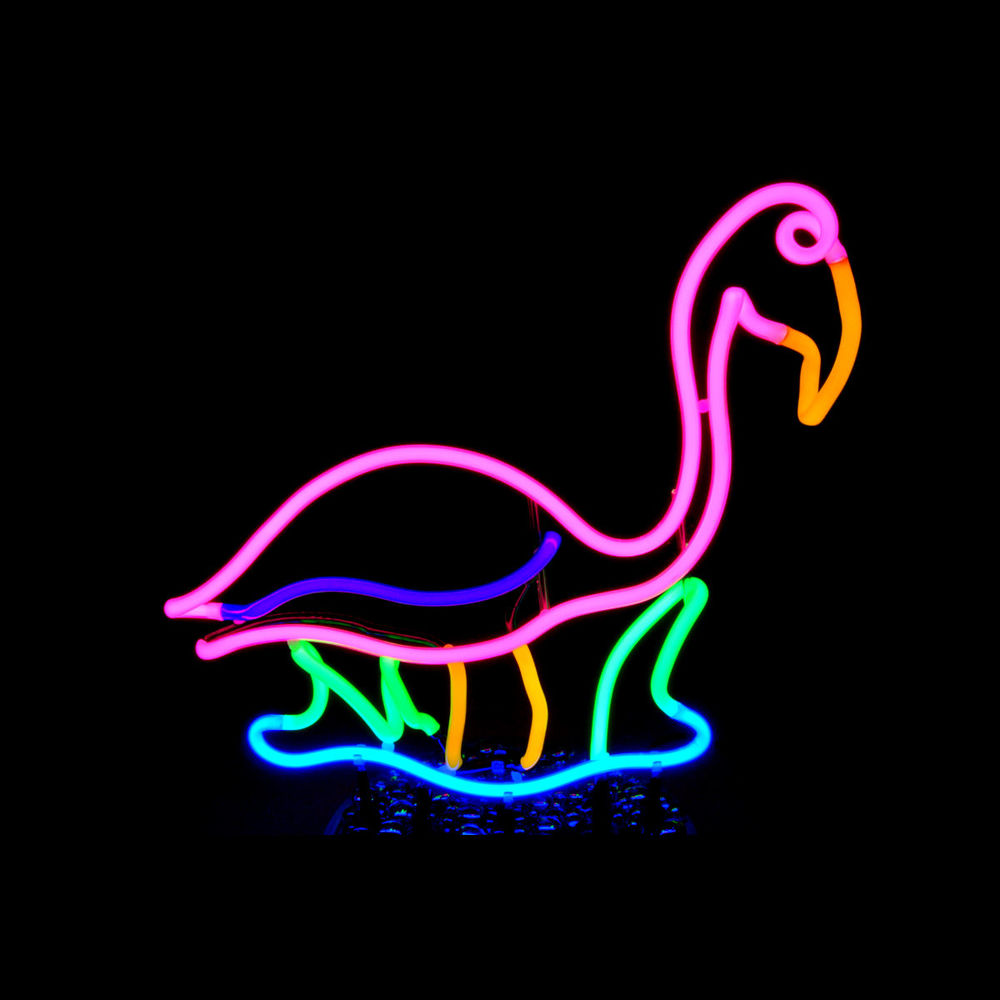 Tropical Pink Neon Flamingo in Watery Marsh