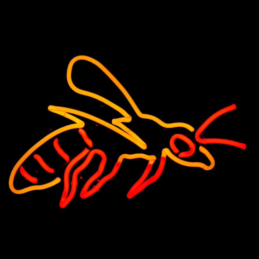 European Hornet in Stained Murano Italian Neon Glass!