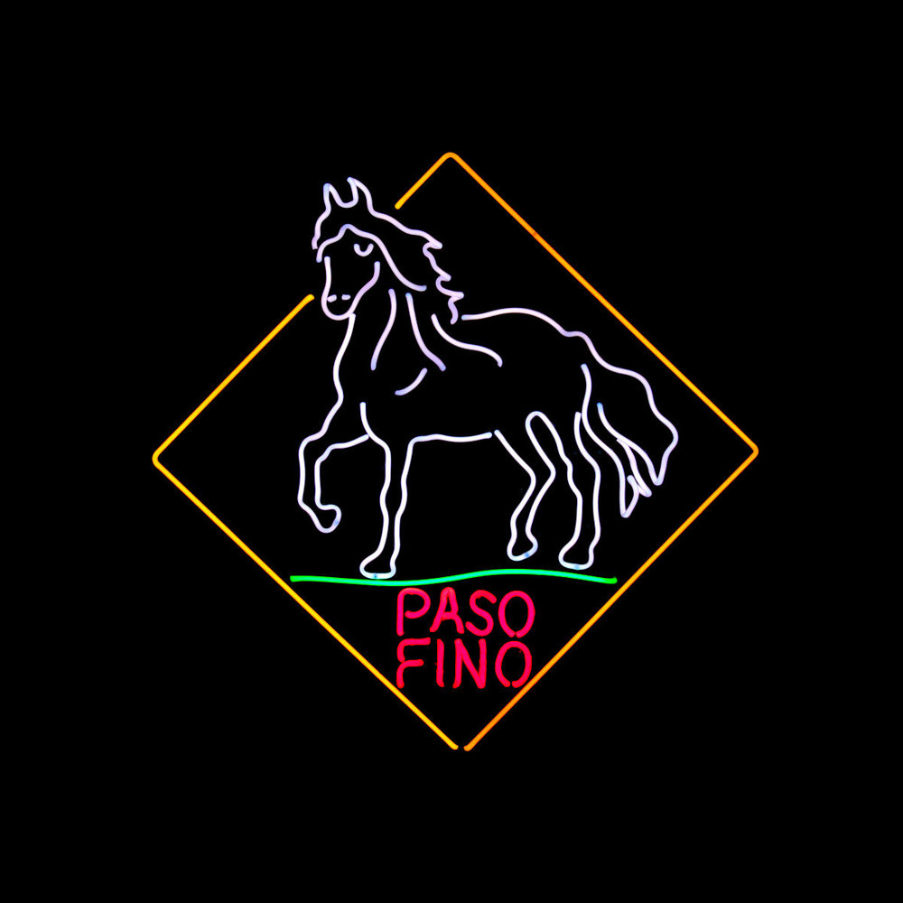 PASO FINO HORSE NEON SCULPTURE by John Barton - Internationally Renowned American Neon Light Sculptor