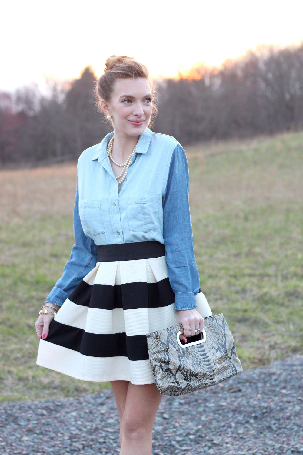 Chambray and Stripes- Enchanting Elegance