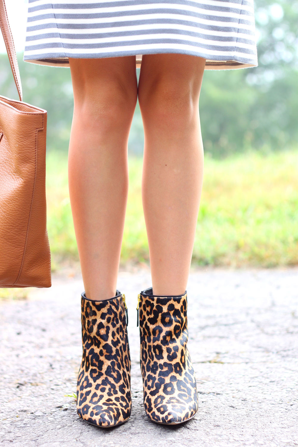 Leopard and Stripes- Enchanting Elegance