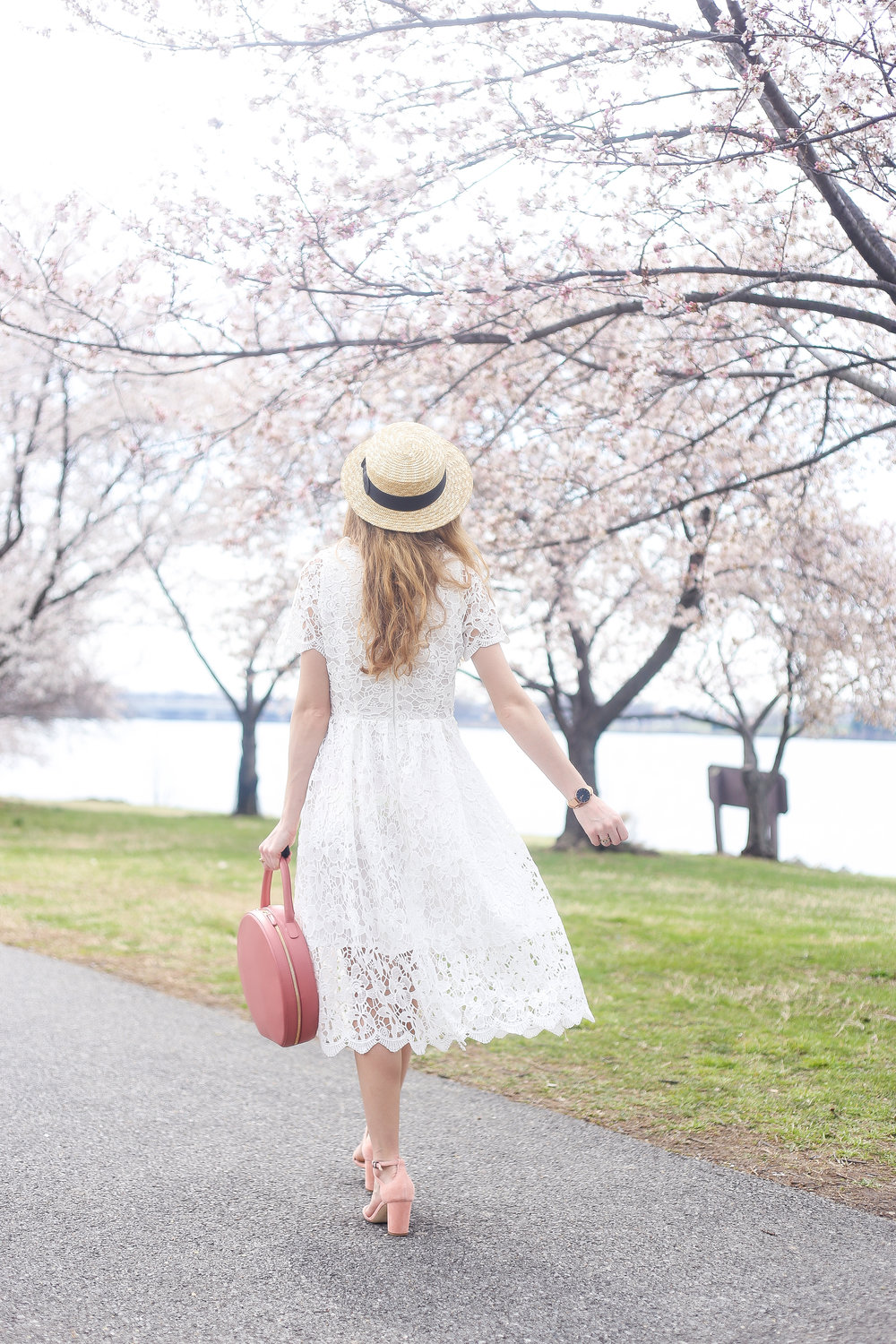 Cherry Blossoms And Dreamy Lace- Enchanting Elegance