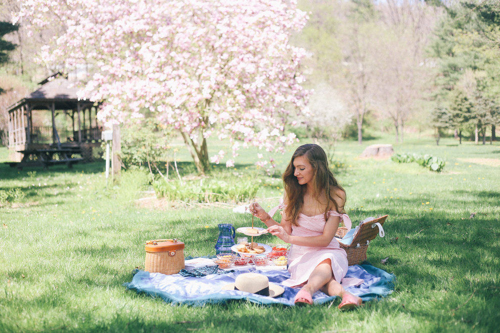 Pretty Picnic- Enchanting Elegance