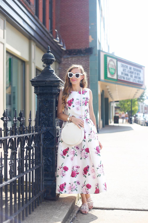As Sweet As A Rose- Enchanting Elegance