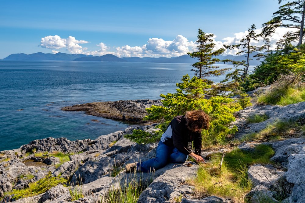 Bryologist Dr. Karen Golinski surveys the cliffs of a small island off the coast of Haida Gwaii for rare moss species.