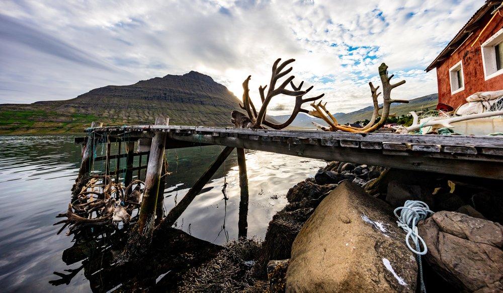 Reindeer Dock