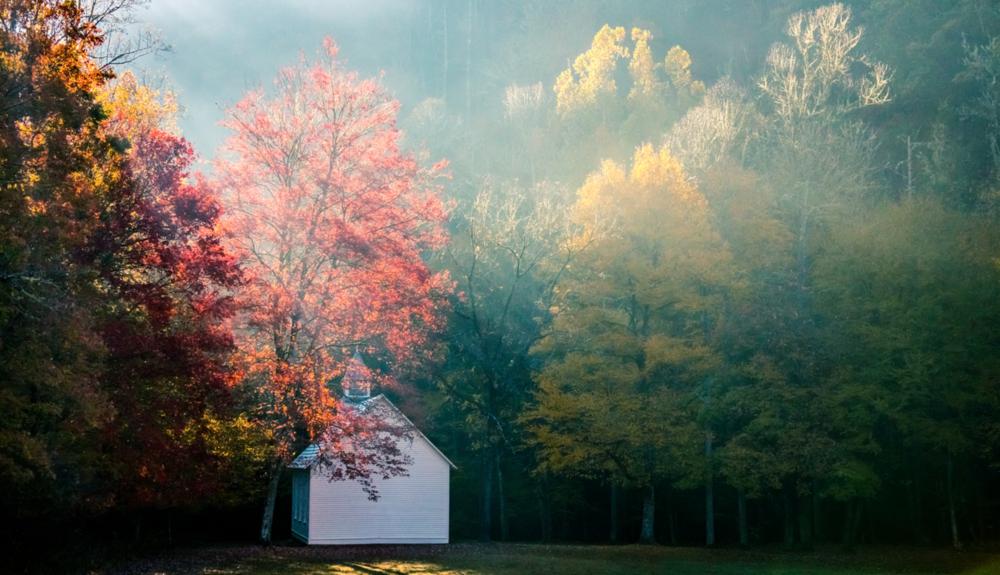 Church Meadow in Autumn