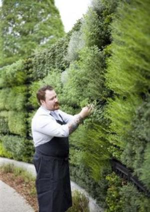 herb garden wall.jpg