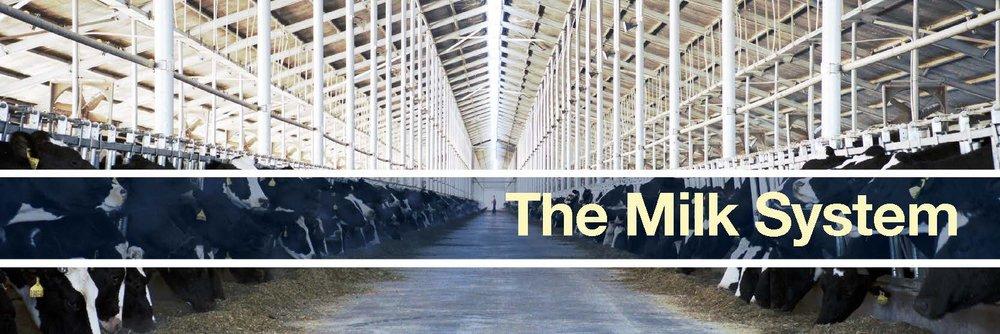 the milk system banner.jpg