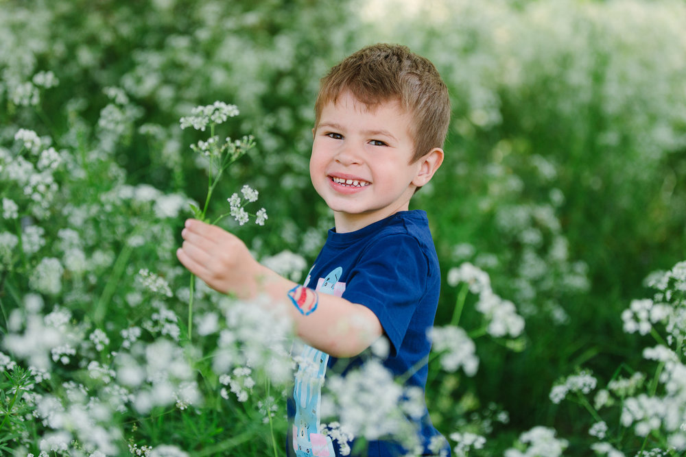 playing in cowparsley
