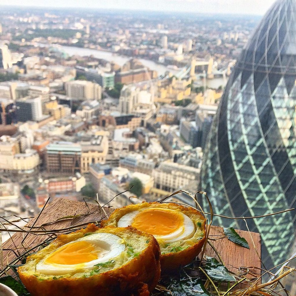 Duck and Waffle's scotch egg