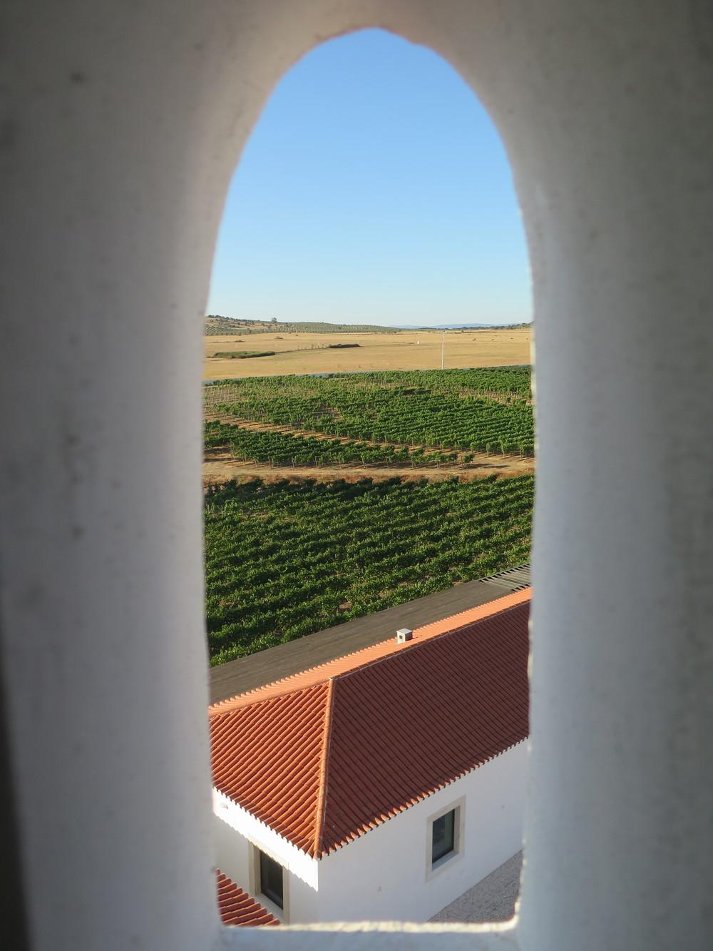 andy-bates-alentejo-portugal
