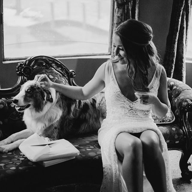 This bride & her pup give me all the feels. Hair + makeup was a breeze on this babe of a bride ⚡️thanks for the shots @darlingjulietphoto #someclaudiagirl
