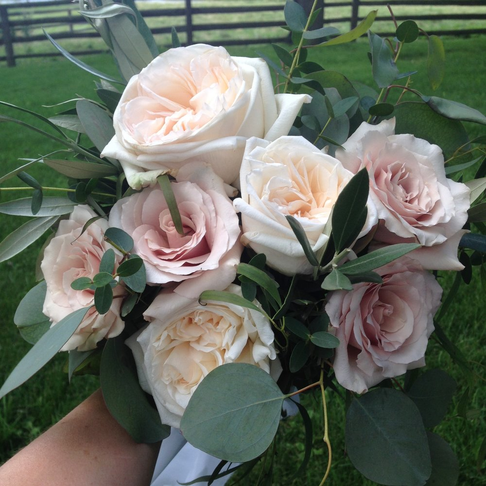 Blush and Cream Bouquet (garden roses, quicksand roses, silver dollar, gunni, olive branch)