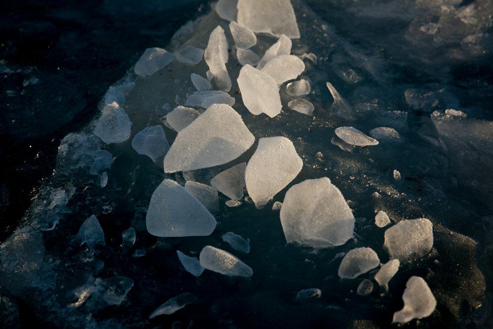 arctic-svalbard-1695.jpg