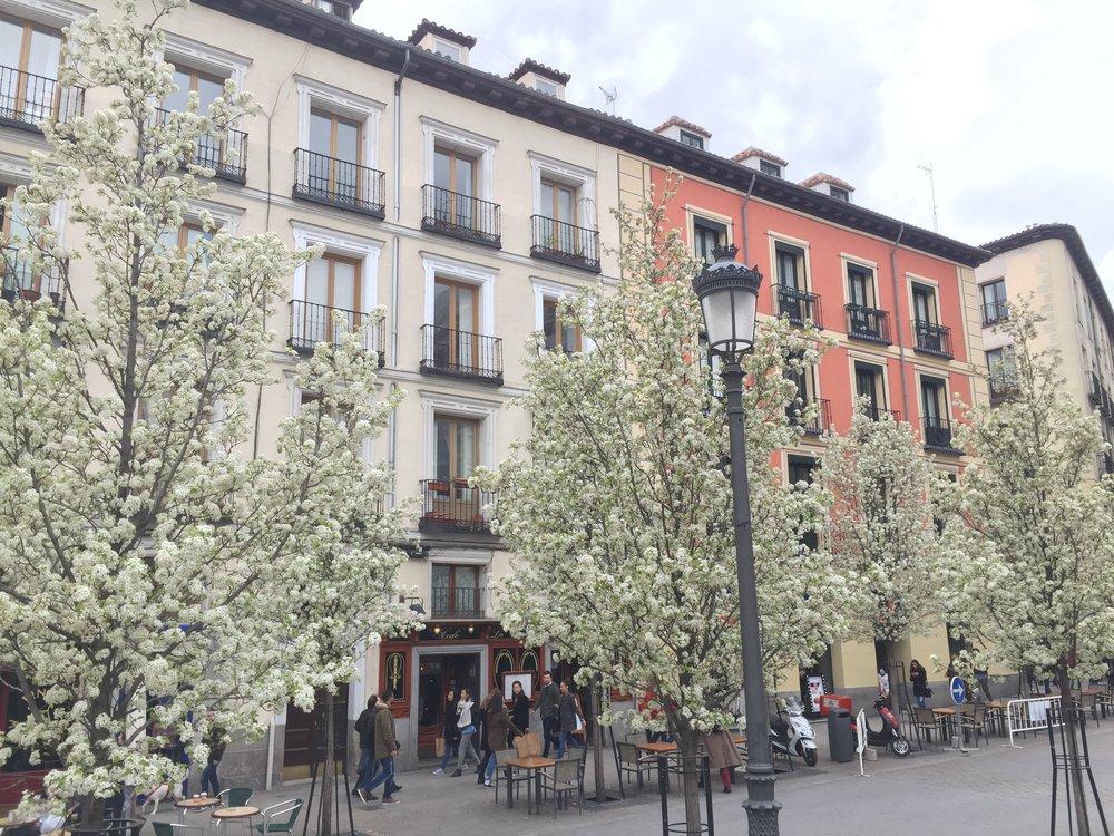 Palacio, Madrid
