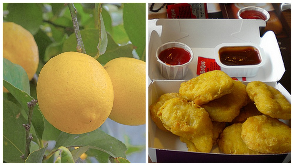 Lemon and McNuggets.
