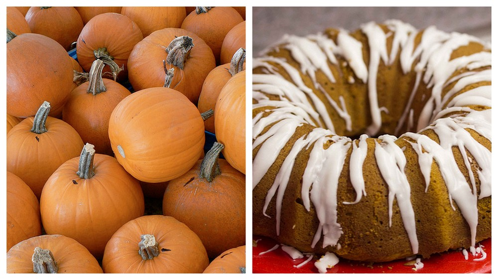 Pumpkin and bundt cake.