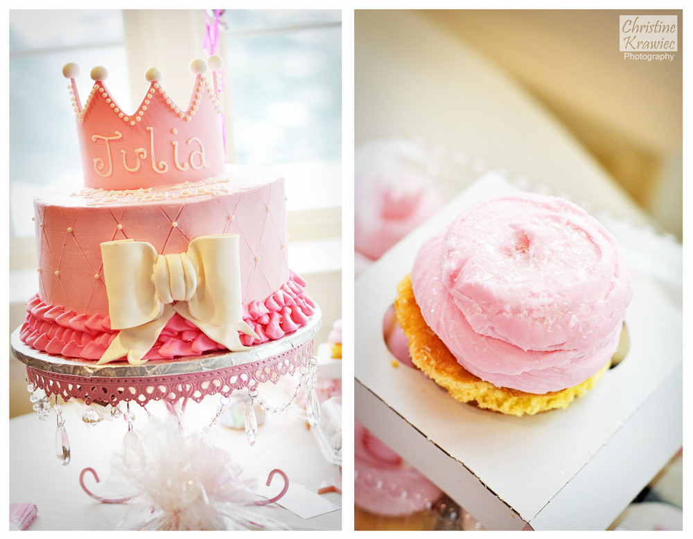 Christine Krawiec Photography - Springfield First Birthday Photographer