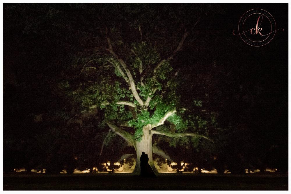 60 Collingswood_ballroom_tree_wedding.jpg
