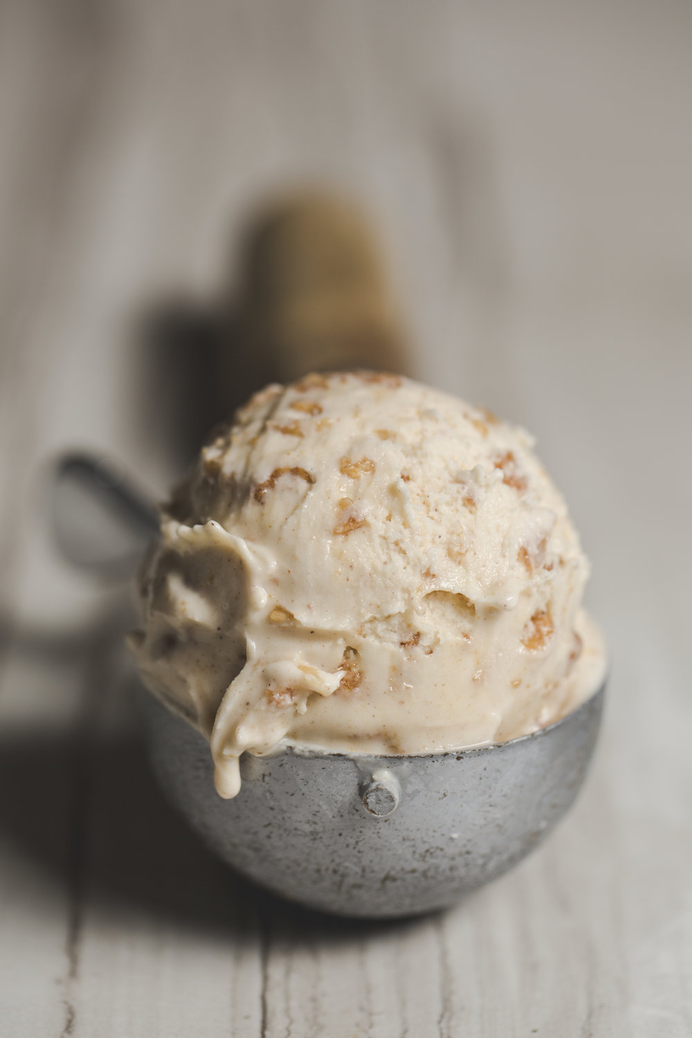 Cinnamon Oatmeal Scoop