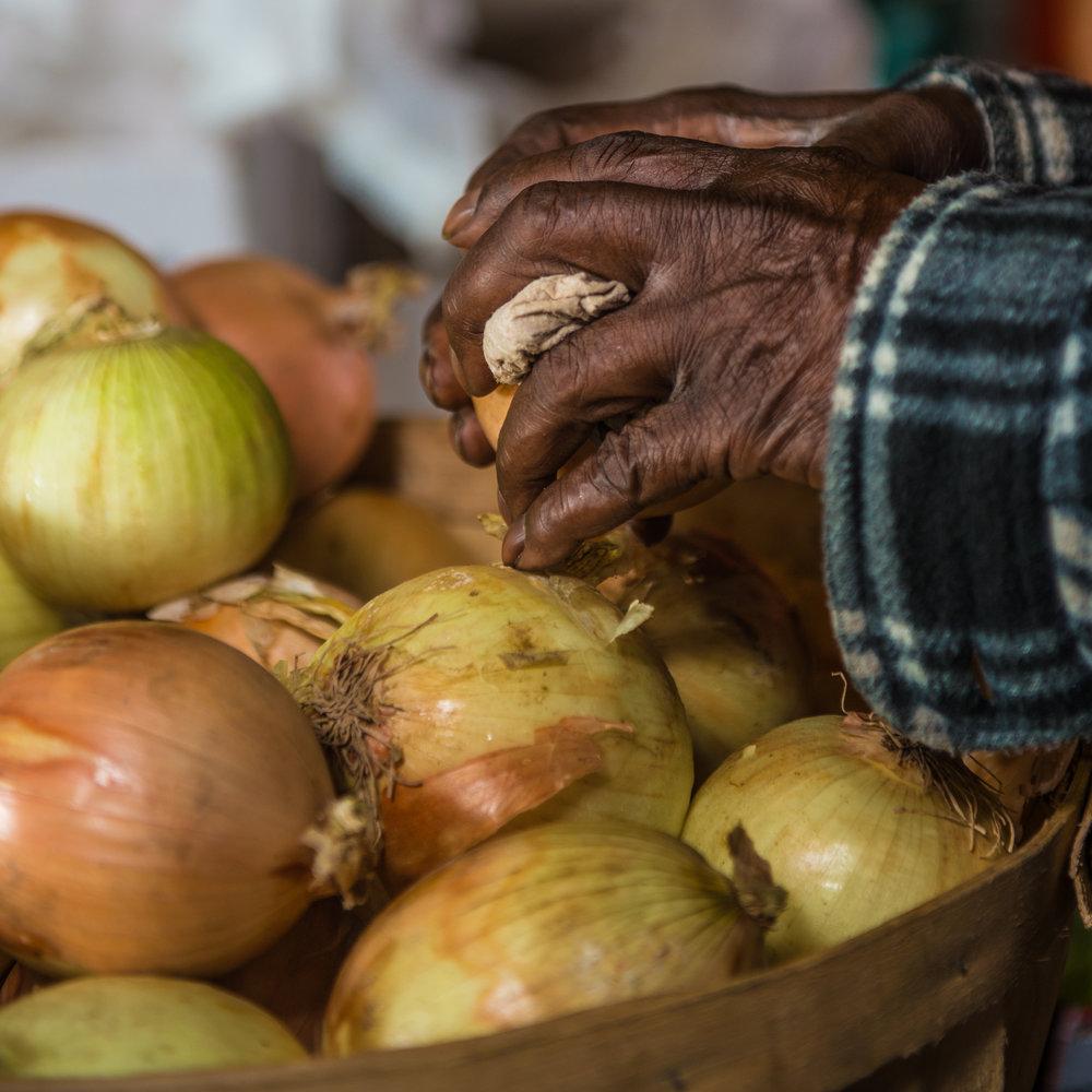 onions_hands.jpg