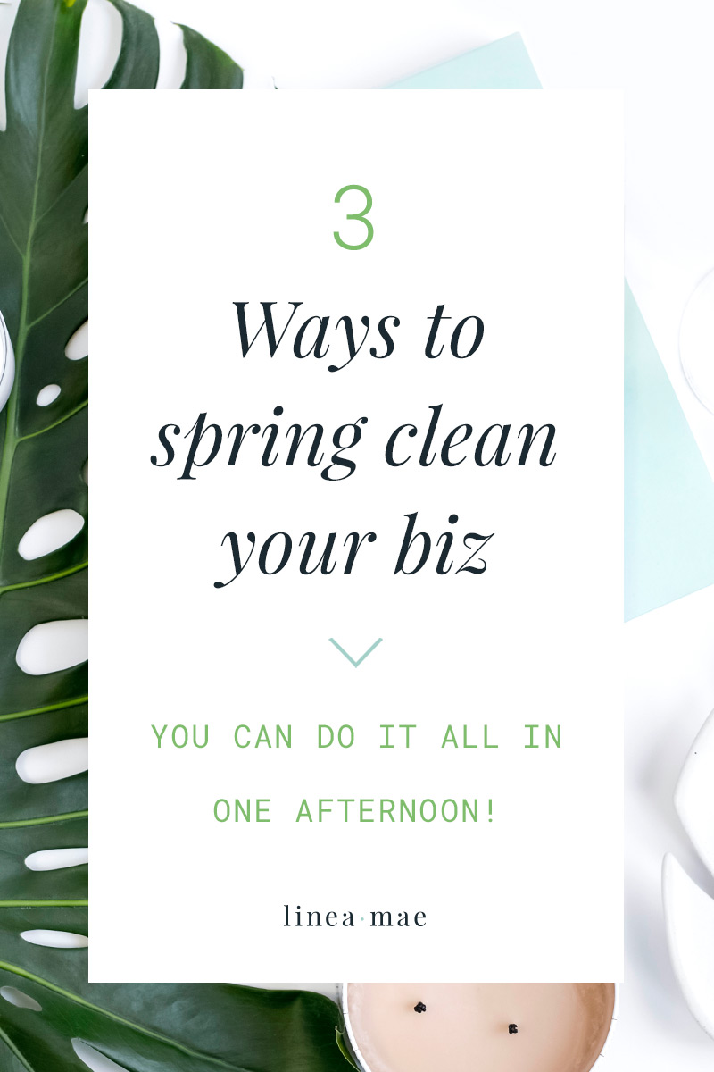 Have you caught the spring cleaning bug yet?It's time to open up those blinds, let in some fresh air, diffuse your favorite essential oils, and clean up your business.That's right, spring is the perfect time to clear your biz clutter.These 3 tips to clean up your office space AND tech will have you refreshed in no time. You'll be amazed at how productive you'll feel after just one afternoon.