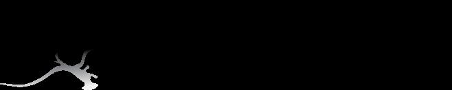 Mosko Moto Logo.png