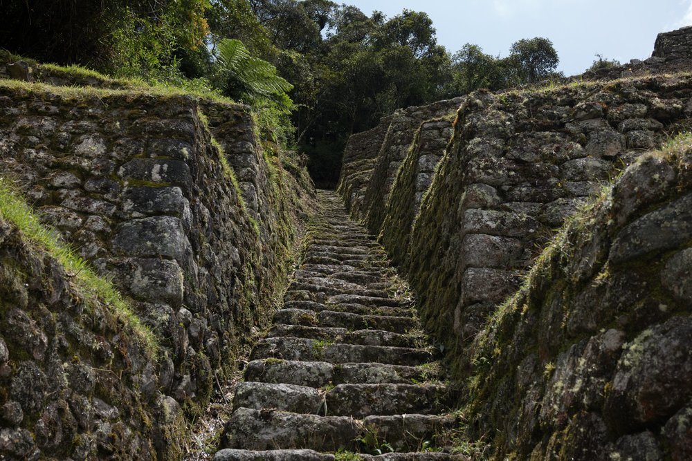 A set of stairs at one of the Inca sites. Not all of the hike looked like this. ;) But be prepared to walk up and down stairs for days! Photo credit: Sakib Alam.